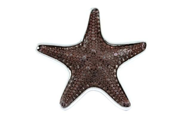 Bague étoile de mer Sépia
