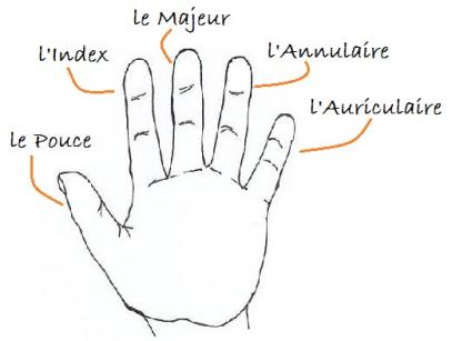 Bague fiancaille quel doigt quelle main