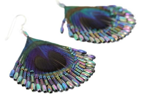 Plumes de paon signification - Signification des plumes d oiseaux ...